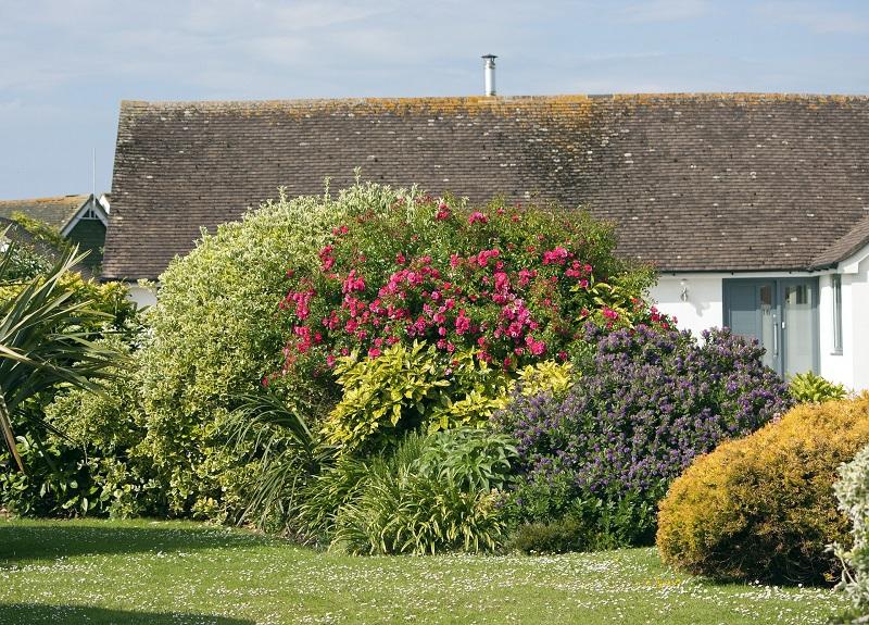 aménagement jardins