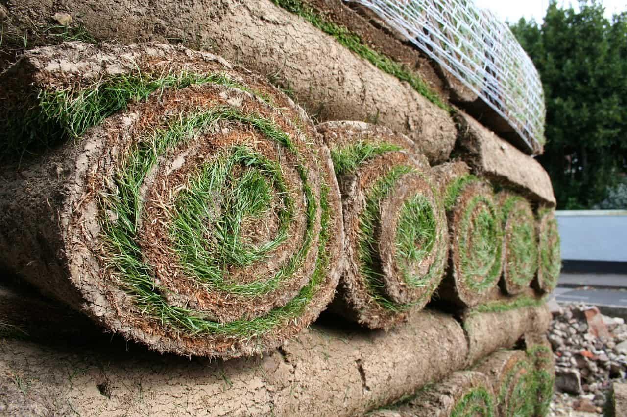 pelouse en rouleaux