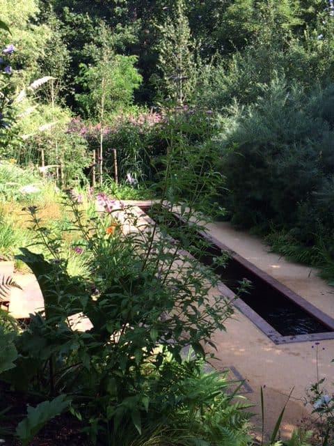 Le jardin de sous-bois (jardin Unep à Chaumont-sur-Loire)