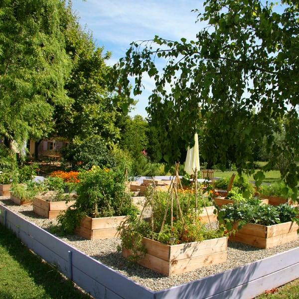 Jardin potager - © Irene Kightley