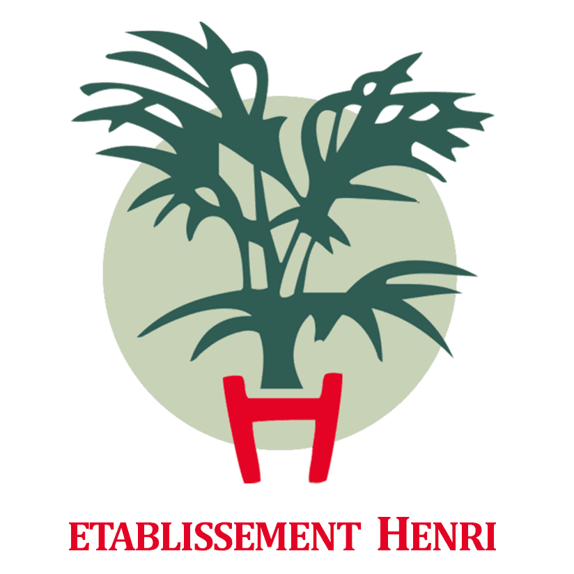 Logo ETABLISSEMENT HENRI