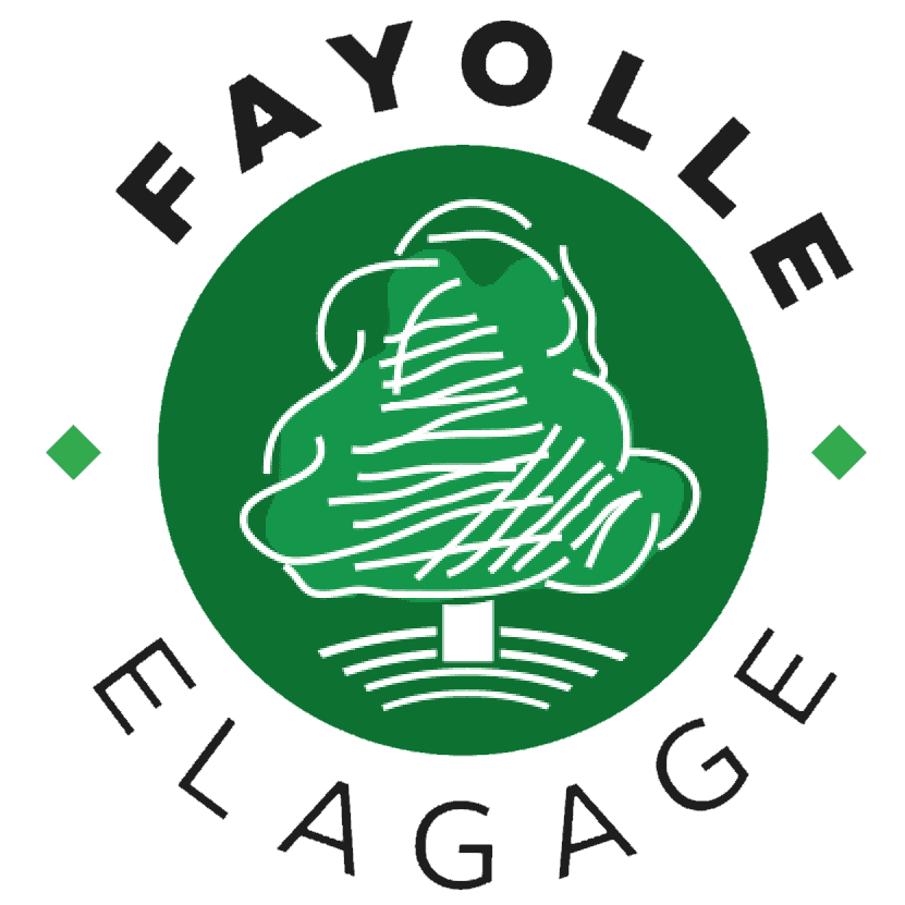 Logo FAYOLLE JEROME SARL