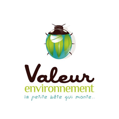 Logo VALEUR ENVIRONNEMENT