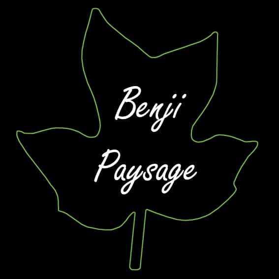 Logo BENJI PAYSAGE