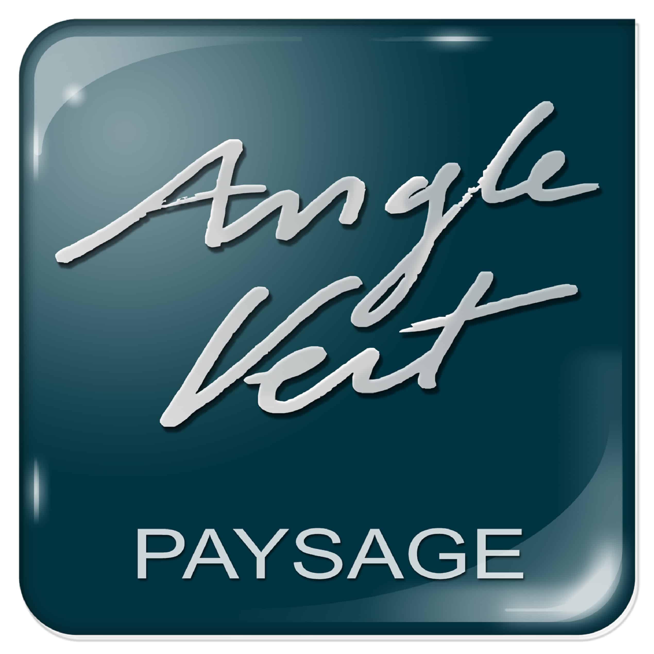 Logo ANGLE VERT