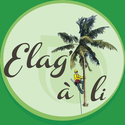 Logo ELAG'  A  LI