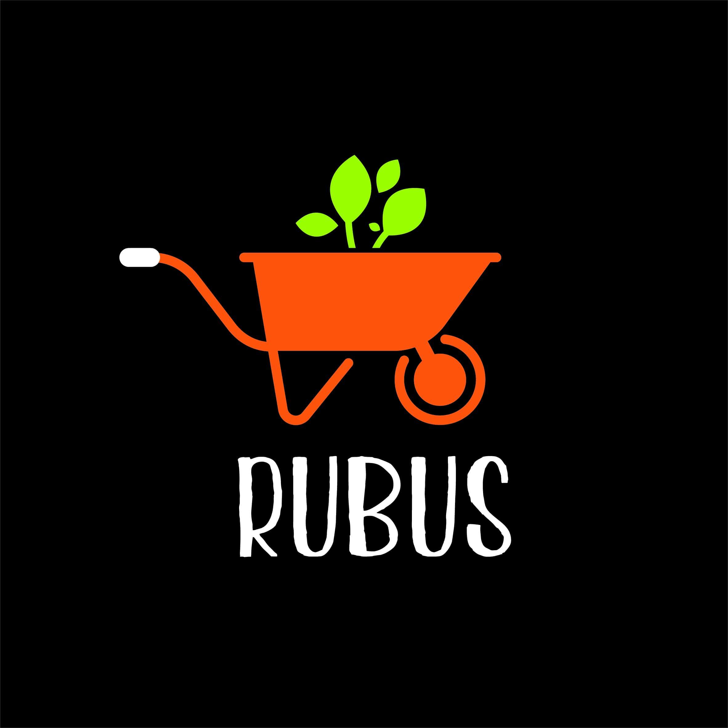 Logo RUBUS SERVICES