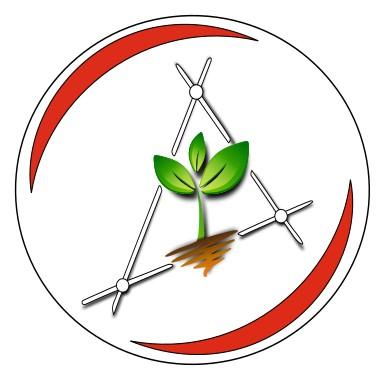 Logo ARBOR ET SOL