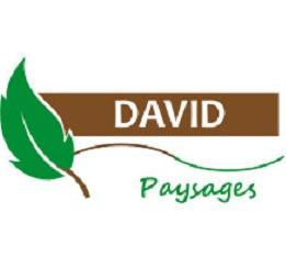 Logo DAVID PAYSAGES