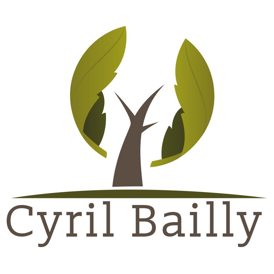 Logo CYRIL BAILLY EIRL